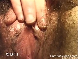 Pigtailed brunette is sucking a meaty doggy dick