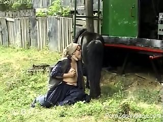 Farm girl gives a passionate blowjob for a stallion
